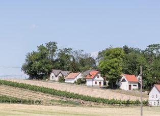 Landschaftsplanung beim Planungsbüro Raumplanung - Stadtplanung in Stillfried